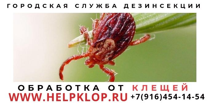 Обработка уничтожение клещей Сергиев Посад